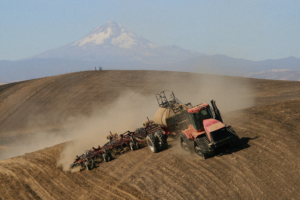 Seeding in Dust, Wasco County, Oregon,