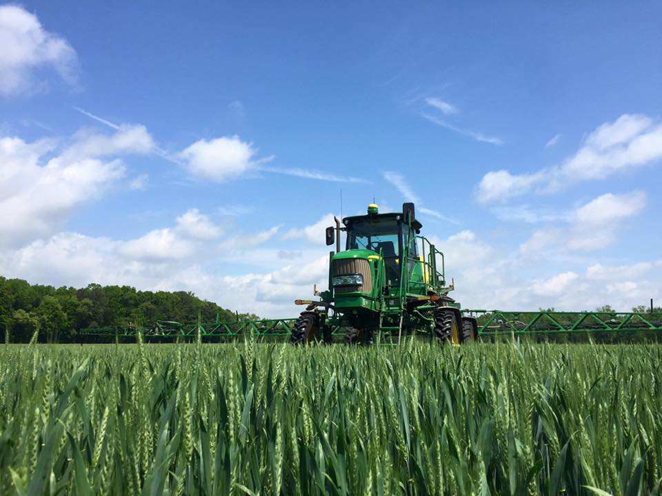The image shows a crop and sprayer to illustrate the 2021 soft red winter wheat crop.