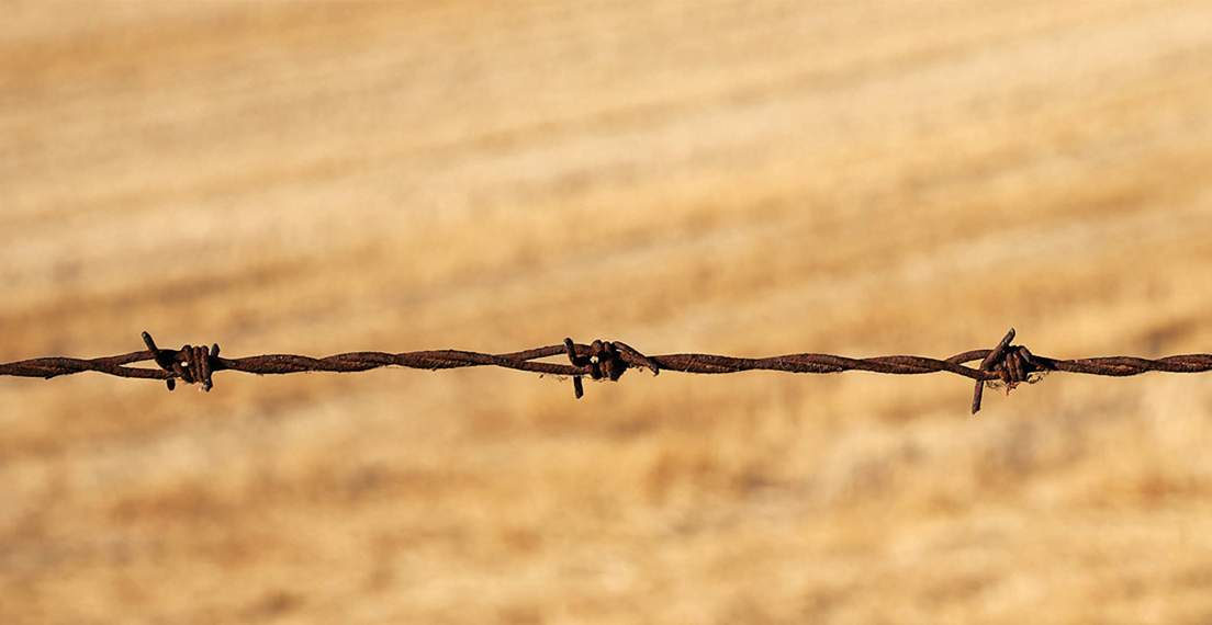 Barbed wire as a sym