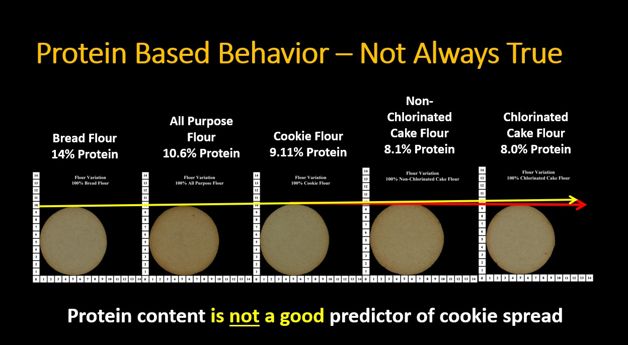 Test of cookie spread using soft white wheat flour and other low protein flour to show protein % does not always predict performance.
